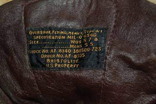 Click image for larger version.  Name:usa1boots1e.jpg Views:84 Size:68.4 KB ID:293600