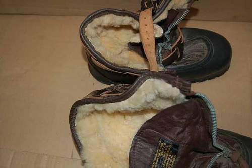 Click image for larger version.  Name:usa1boots1f.jpg Views:57 Size:42.5 KB ID:293601