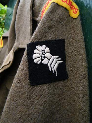 South African 6th Armoured div/RAC BD 1945
