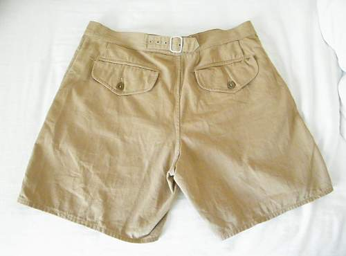 Click image for larger version.  Name:trop shorts 2b.jpg Views:116 Size:139.1 KB ID:419348