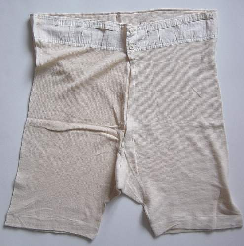 Click image for larger version.  Name:Underpants 003.jpg Views:77 Size:230.6 KB ID:62556