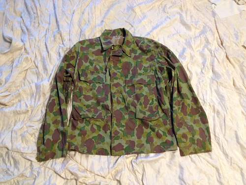 Click image for larger version.  Name:Army Camo 1.jpg Views:382 Size:120.2 KB ID:710776