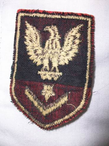 Can anyone identify this patch??