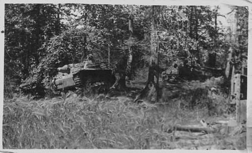 Canadian Sherman in Europe