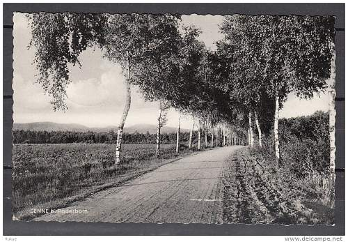 Click image for larger version.  Name:Senne bei Paderborn.jpg Views:124 Size:140.8 KB ID:675938