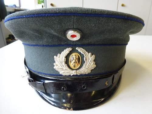 Click image for larger version.  Name:Schirmmuetze-fuer-Mannschaften-der-Sanitaetstruppe-der-Reichswehr-Seltenes-Stueck-das-ausnahmswe.jpg Views:69 Size:108.5 KB ID:816054