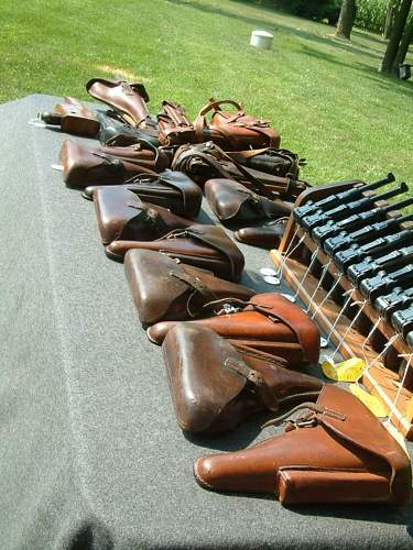 The Great Sheandoah Valley collectors Meet and Shoot