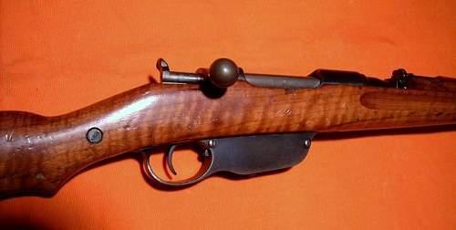 My M95 Steyr