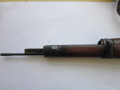 early SS rifle ?
