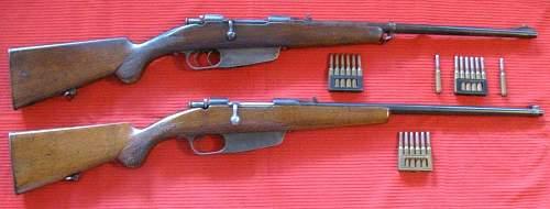 Two Carcano Rifles