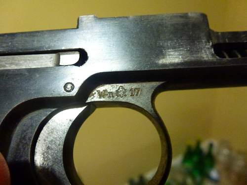 """My Austrian Steyr 1917, can you tell if it was """"Germanified""""?"""