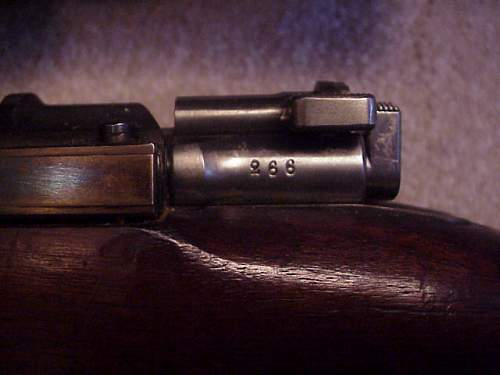 Click image for larger version.  Name:M41 sniper-12.JPG Views:108 Size:43.3 KB ID:433890