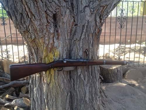 1917 updated Steyr M95