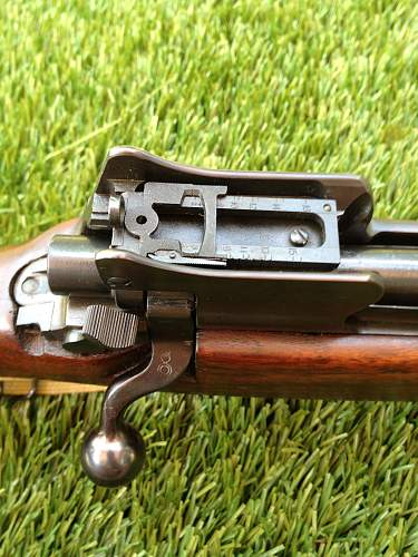 M1917 Rifle For Review!