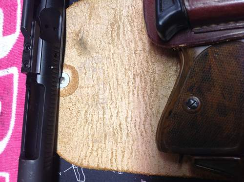 PPK and Holster