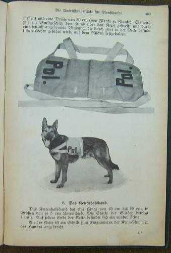 German Police Weapon's Manual/Book 1941