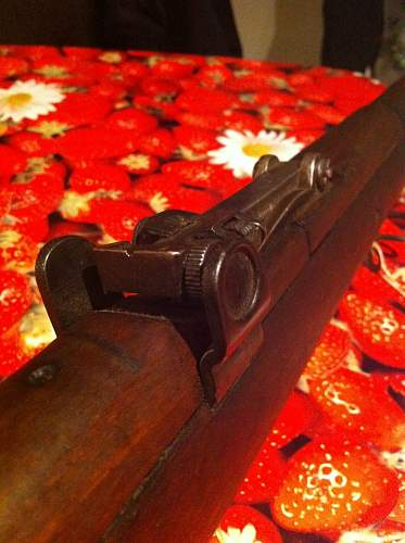 Small Arms of the Great War