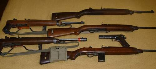 Click image for larger version.  Name:My Carbines.JPG Views:1089 Size:47.1 KB ID:760736