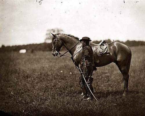Click image for larger version.  Name:Horse-War.jpg Views:275 Size:51.1 KB ID:81565