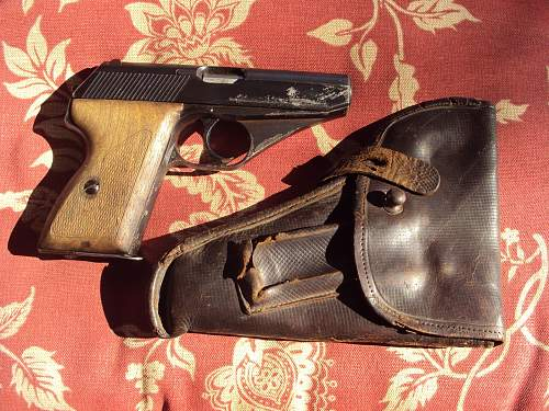 Two Odd Holsters