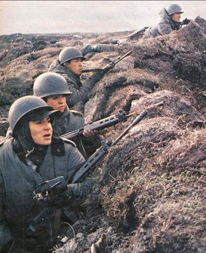 Click image for larger version.  Name:argentine soldiers.jpg Views:41 Size:153.2 KB ID:740332