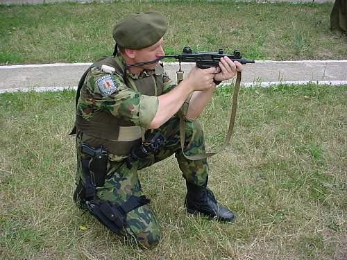 Click image for larger version.  Name:01pminstructie politia militara.jpg Views:28 Size:216.4 KB ID:893416