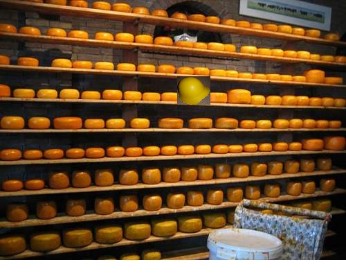 Name:  cheese-factory-photo_989030-770.jpg