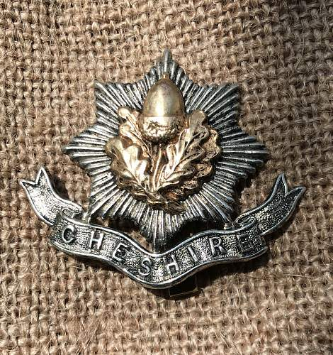 Is this a Cheshire Reg Officers Badge?