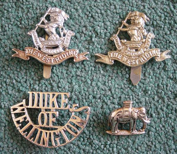 Click image for larger version.  Name:Duke of Wellingtons Regt group..jpg Views:1494 Size:269.3 KB ID:18514