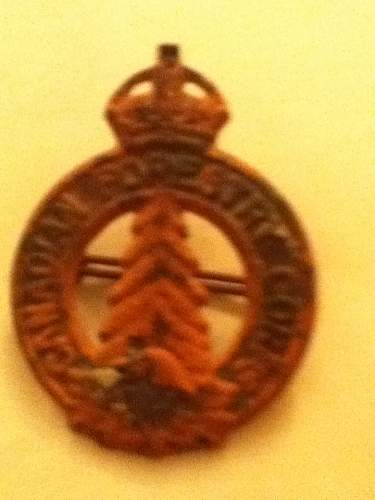 canadian forestry corps badge? age? information?