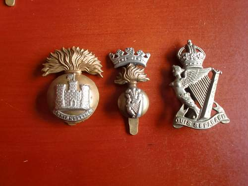 Irish Regiments in the Great War