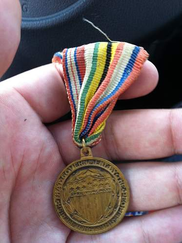 Allied Colors Medal?