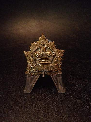 Click image for larger version.  Name:Canadian Expeditionary Force.jpg Views:92 Size:88.7 KB ID:399380