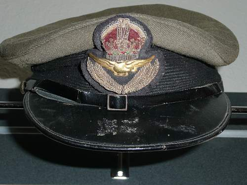 Early RAF officers arm eagles for the Khaki tunic