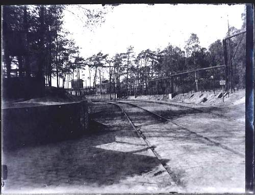 Click image for larger version.  Name:Wooded Camp possibly a border fence Positive.jpg Views:78 Size:123.3 KB ID:555630