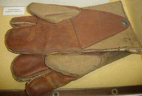 Click image for larger version.  Name:Albert Balls gloves.jpg Views:102 Size:214.4 KB ID:60503