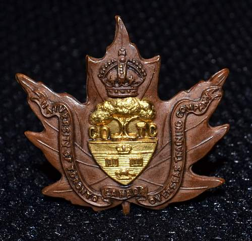 WW1 University of Toronto COTC Collar Badge