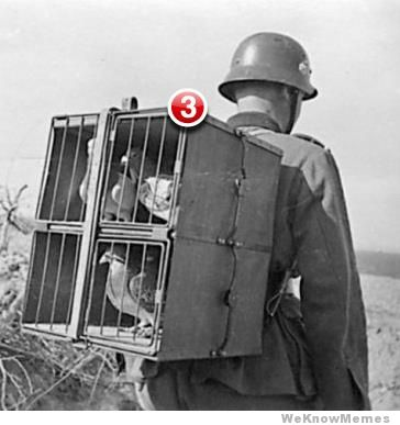 Name:  3-unread-messages.jpg Views: 95 Size:  23.4 KB