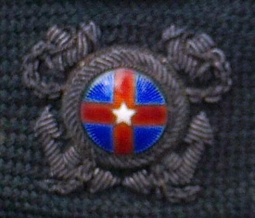 Click image for larger version.  Name:of badge.jpg Views:51 Size:65.6 KB ID:740143