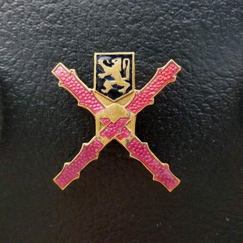 Who can identify these two belgian badges of Rhineland occupation?